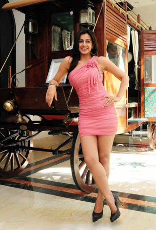 Nikki-Galrani-hot-photo